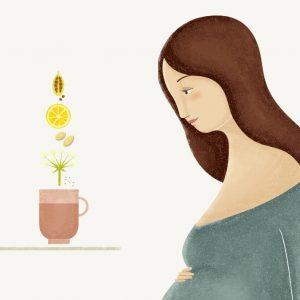Ilustración de embarazada platónika e infusión