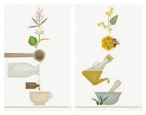 Ingredientes naturales, por Úrsula Epops - Platonia