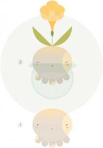 Pulbo y pulbesia, ciclo de vida