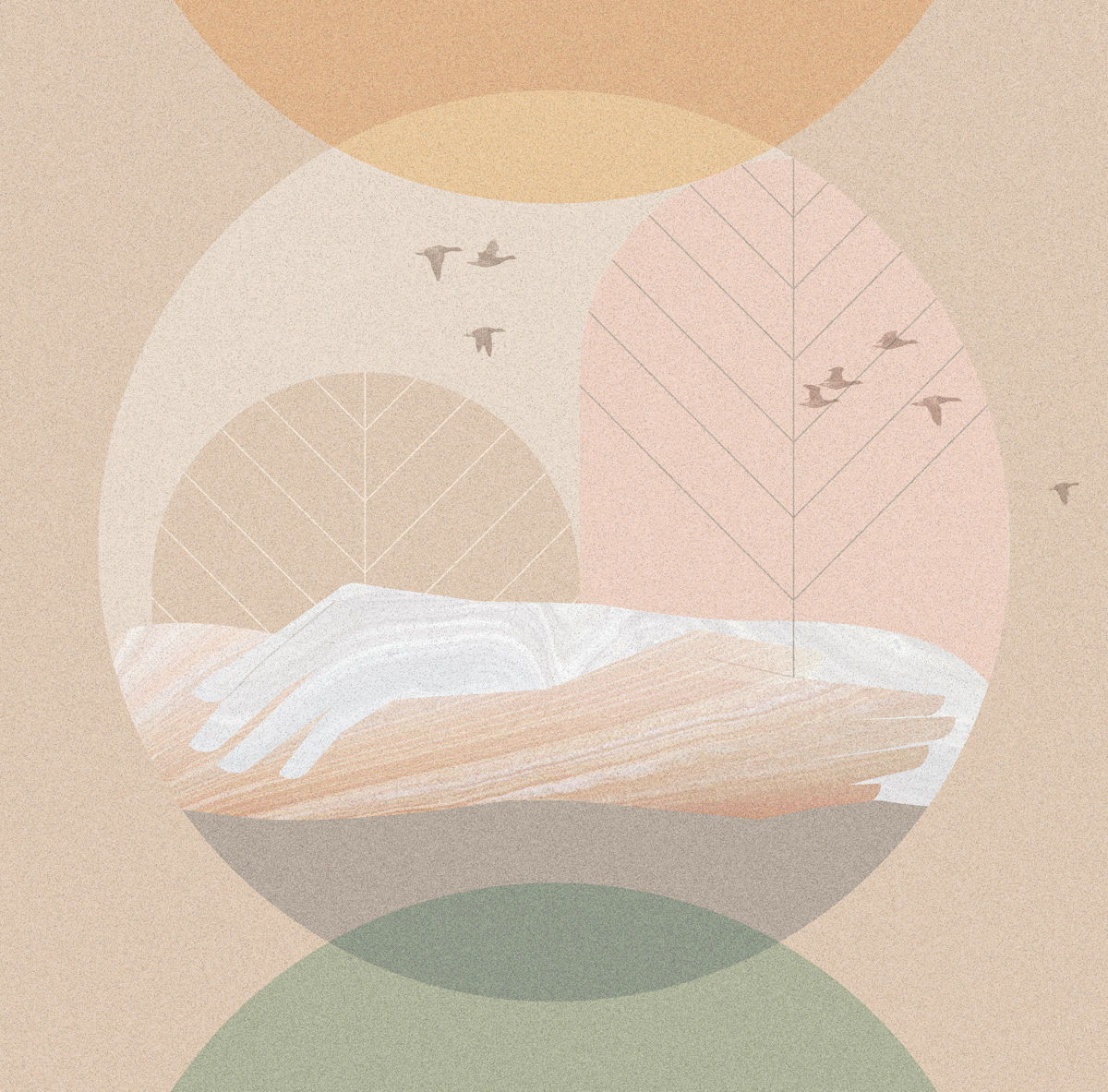 Sin Colores, Lecturas Platónikas